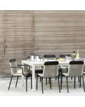 Table repas Sienna 220x100 alu blanc fumée